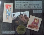 Illustrated Atlas of Clinical Anatomy and Common Disorders of the Horse Volumes 1