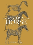 Anatomy of the Horse , The