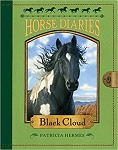 Black Cloud - Horse Diaries #8