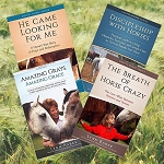 Gospel Horse Series Bundle by Lynn Baber