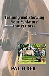 Training and Showing Your Miniature Horse in Halter Classes