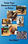 Train Your Miniature Horse to Drive